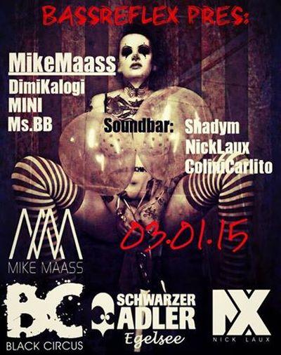 Bass Reflex: Mike Maass