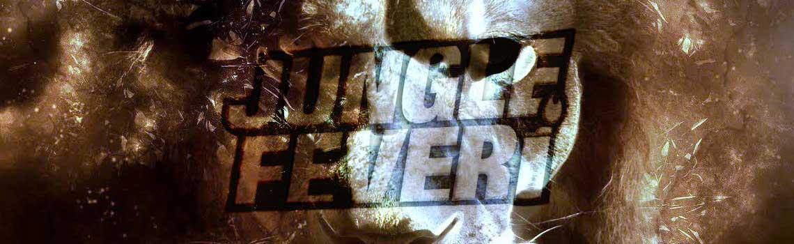 Jungle / Drum & Bass Documentaries